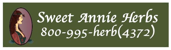 Sweet Annie Herbs
